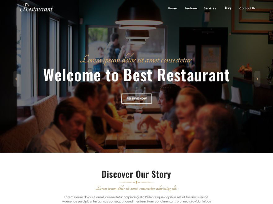 best free food blog themes
