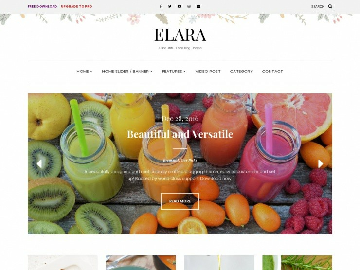 wordpress food blog themes free