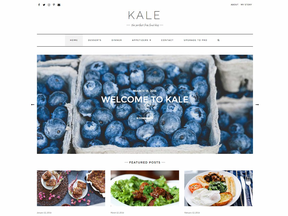 Best Free WordPress Food Themes